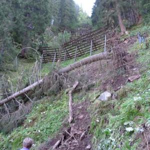 Lawinenschutz Gasteiner Alpenstraße