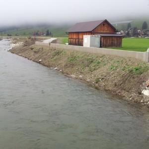 Hochwasserschutz Mur-Unternberg